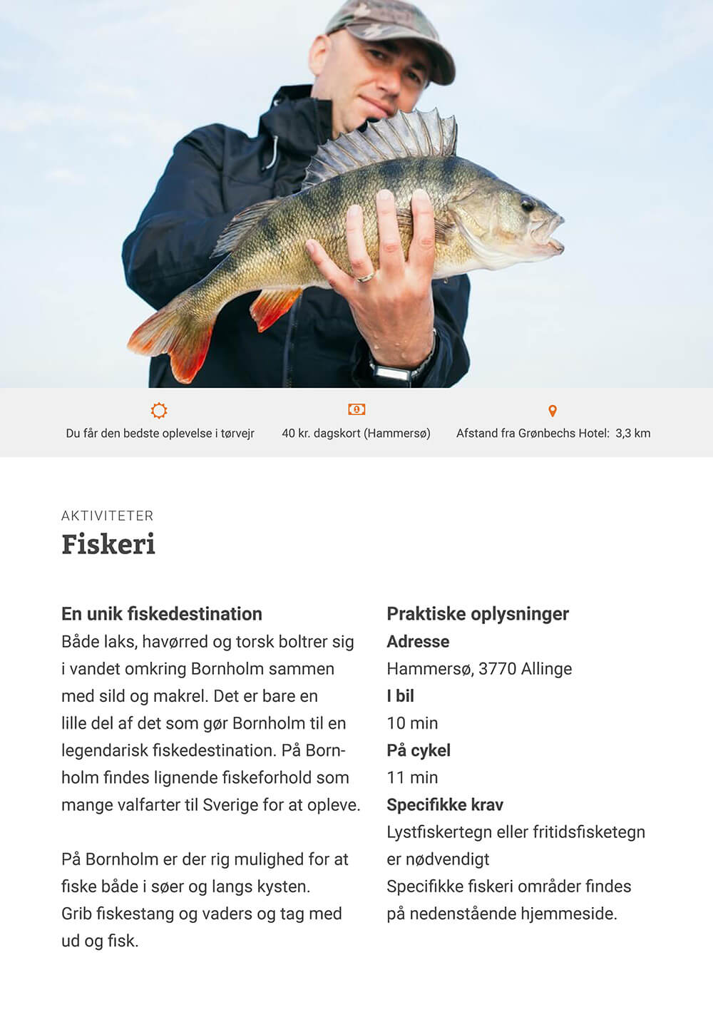 karoline, paarup, portfolio, website, project, groenbechs, guide, low, tech, catalogue